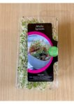Alfalfa Sprouts 120g Punnet